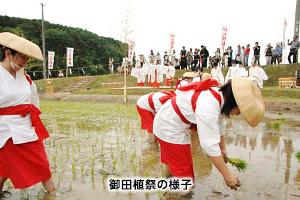 御田植祭の様子