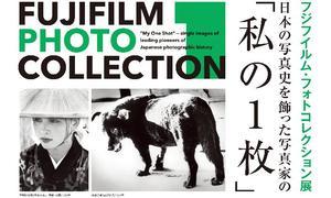 fujifilm-top.jpg
